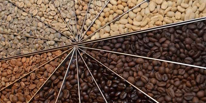 Hương vị cà phê trong quá trình rang