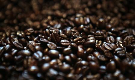Phân phối cà phê hạt nguyên chất tại tp.hồ chí minh