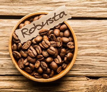 Giá cà phê nguyên chất tăng do sản lượng giảm mạnh