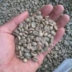 Cà phê hạtnguyên chất